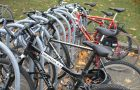The University will provide students with free bicycle rentals